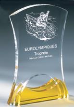 trophée plexiglass luxe