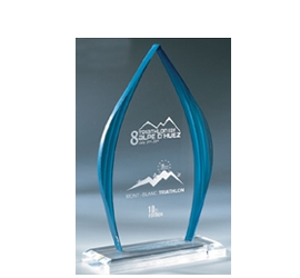 Trophée plexiglass Transparent ''luxe'' 160-02
