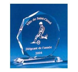 Trophée plexiglass Transparent ''luxe'' 117-42