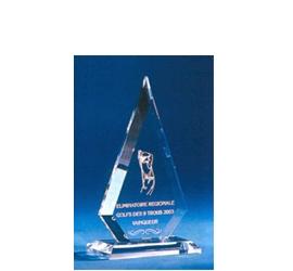 Trophée Transparent ''luxe'' 120-01