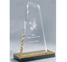 Trophée Transparent ''luxe'' 158-13