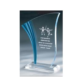 Trophée plexiglass Transparent ''luxe'' 162-22