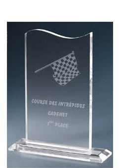 Trophée plexiglass Transparent 173-12