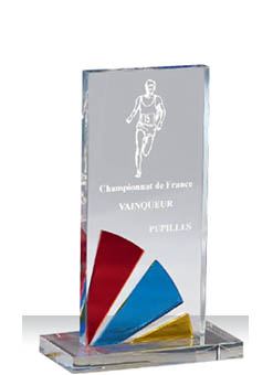 Trophée plexiglass Transparent 175-51