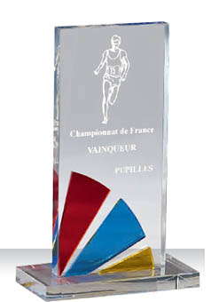 Trophée plexiglass Transparent 175-52
