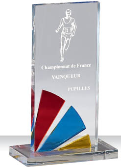 Trophée plexiglass Transparent 175-53